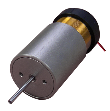 Linear Voice Coil Motor With Internal Shaft And Bearing